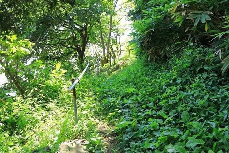 恵美須神社 参道
