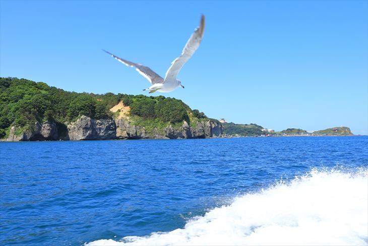 観光船あおばとからの風景