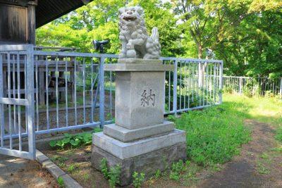 高島稲荷神社  狛犬様