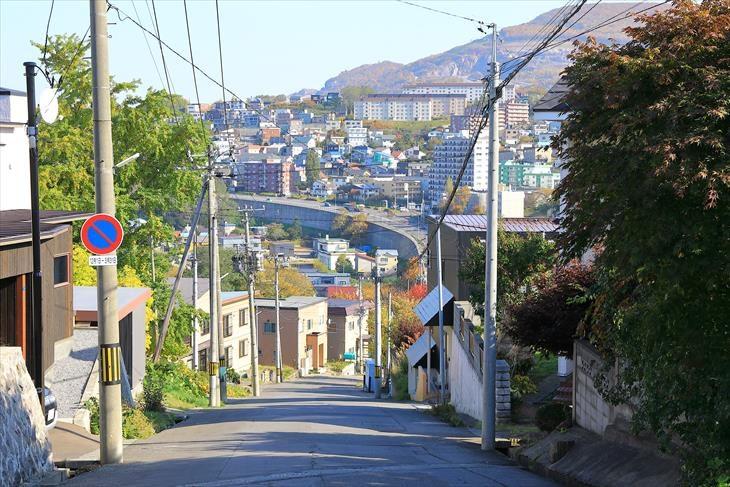 銀鱗荘までの坂道