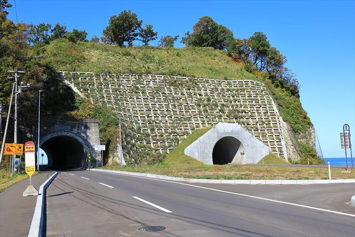 金吾龍神社の前の道