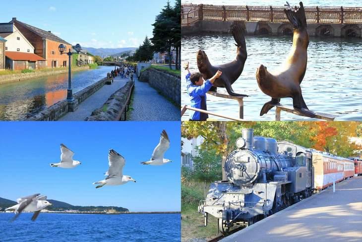 小樽観光・旅行を家族で楽しむおすすめの観光スポット