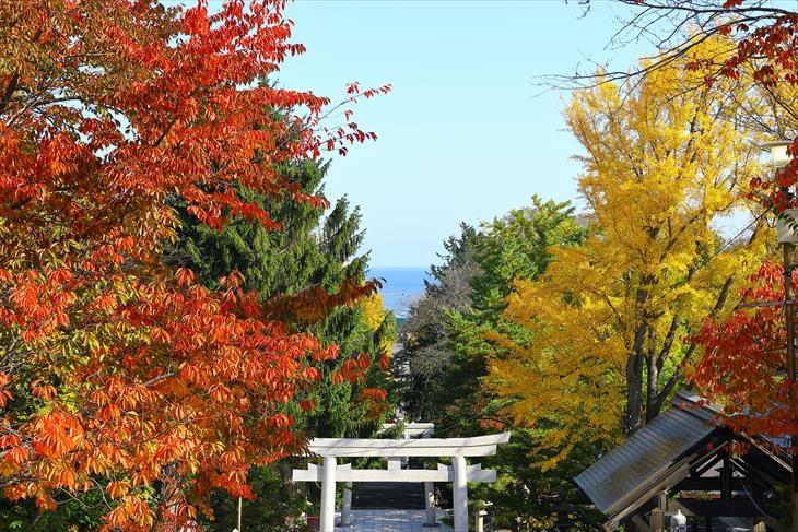 住吉神社から見る海