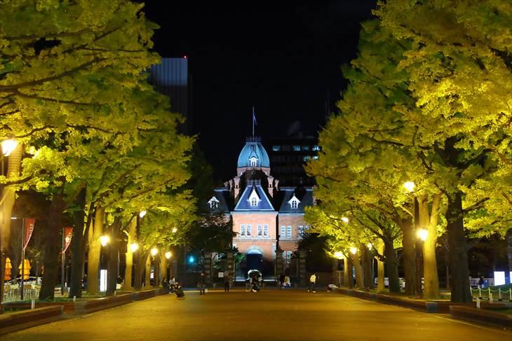 北海道庁旧本庁舎の紅葉夜景