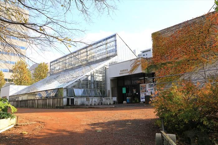北大植物園 温室