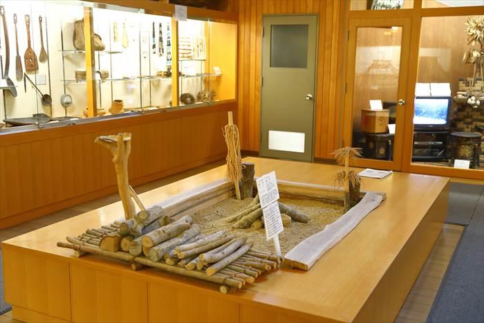 北大植物園 北方民族資料室
