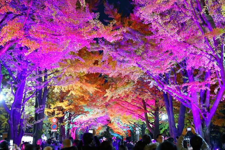 金葉祭のライトアップ・レインボーカラー