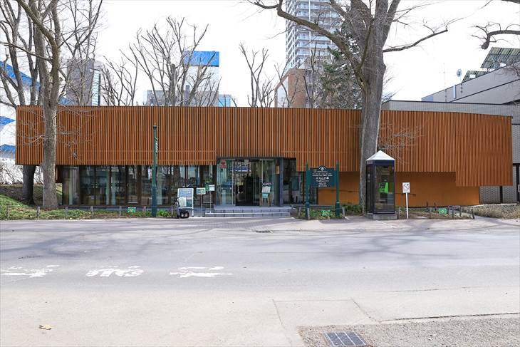 北海道大学 エルムの森