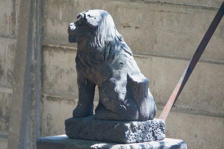 琴似神社 3組目の狛犬様