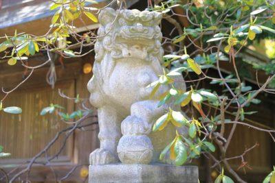 琴似神社 2組目の狛犬