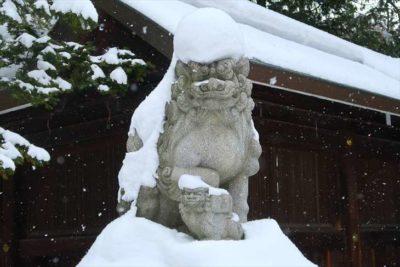 琴似神社の狛犬様(冬)