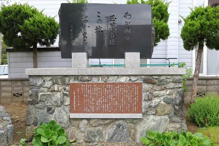 わが国の玉葱栽培この地にはじまる:玉葱栽培発祥の地 碑