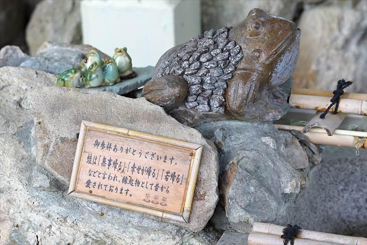 星置神社 手水舎の蛙