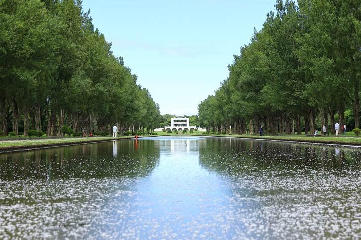前田森林公園展