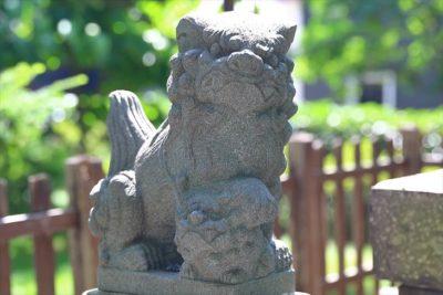 札幌神社(東区)狛犬様