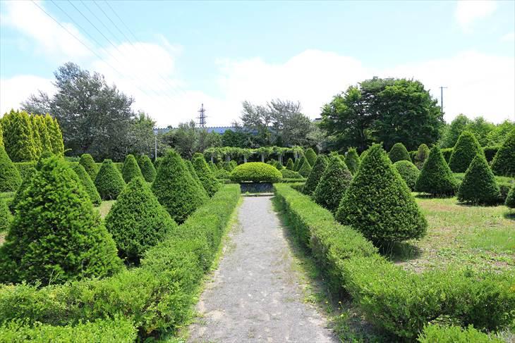 平岡樹芸センター 西洋庭園