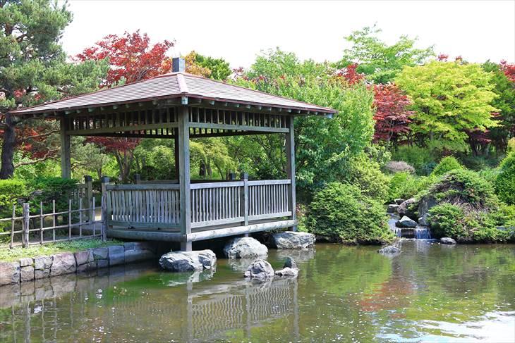 平岡樹芸センター 日本庭園
