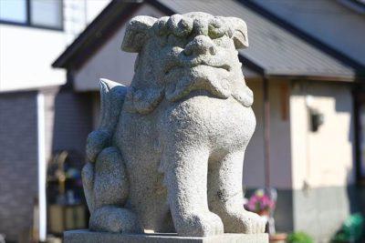 瑞穂神社(札幌)狛犬様