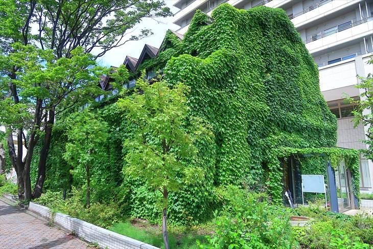日本食品製造合資会社旧工場