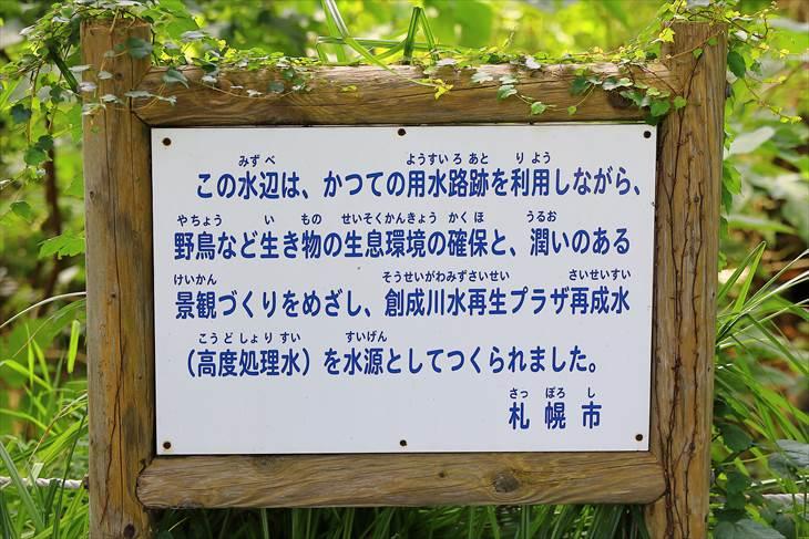 屯田防風林
