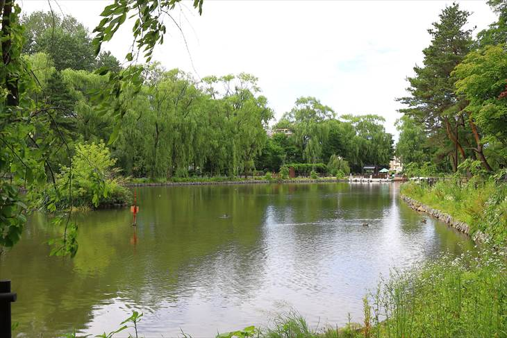 月寒公園 ボート池