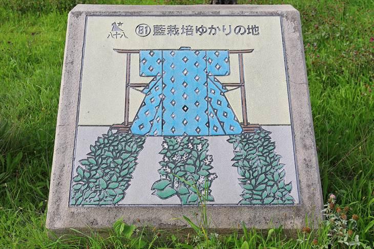 藍栽培ゆかりの地
