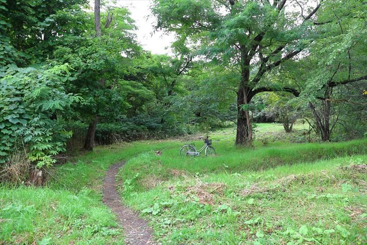 北大遺跡保存庭園