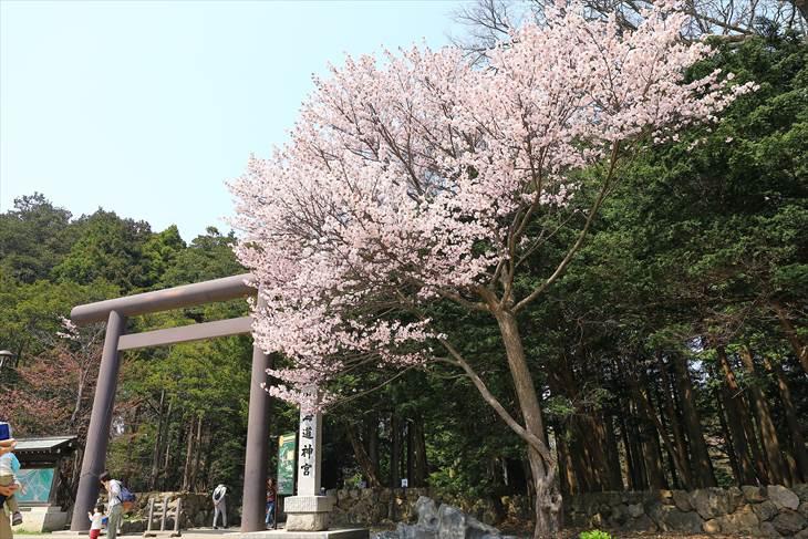 北海道神宮 第三鳥居