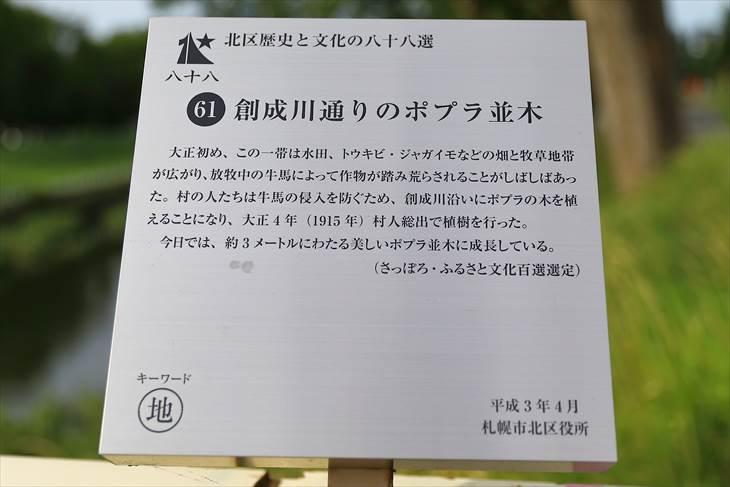 「創成川通のポプラ並木」