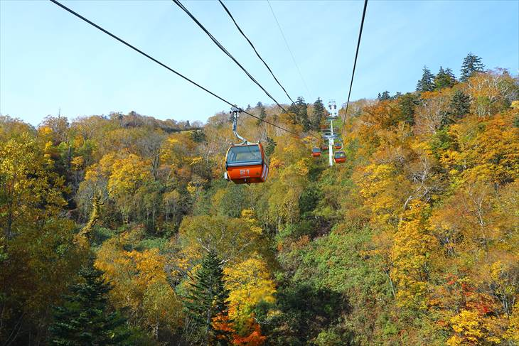 札幌国際スキー場 紅葉