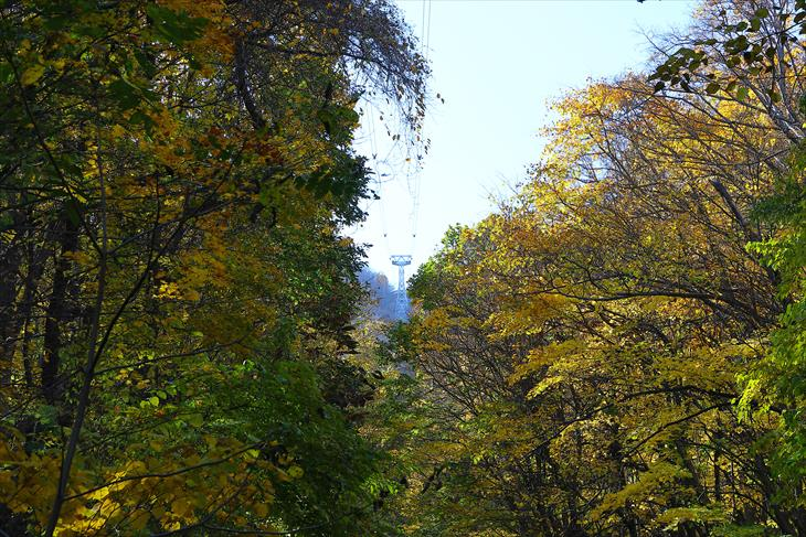 平和記念塔(仏舎利塔・札幌平和塔)への坂道