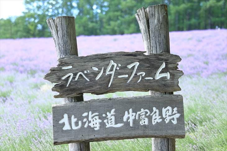 ファーム富田