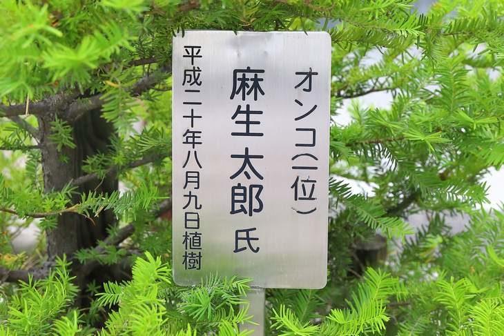 龍宮神社 麻生太郎 植樹のオンコ