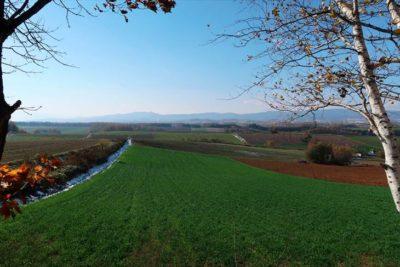 三愛の丘展望公園からの風景